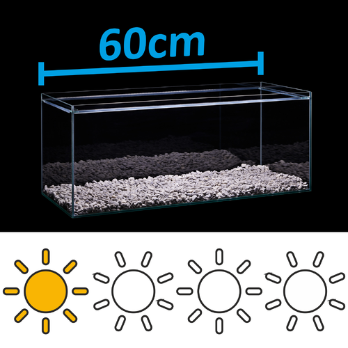 LED Set for 60cm aquarium - light requirements: low