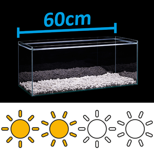 LED Set for 60cm aquarium - light requirements: standard