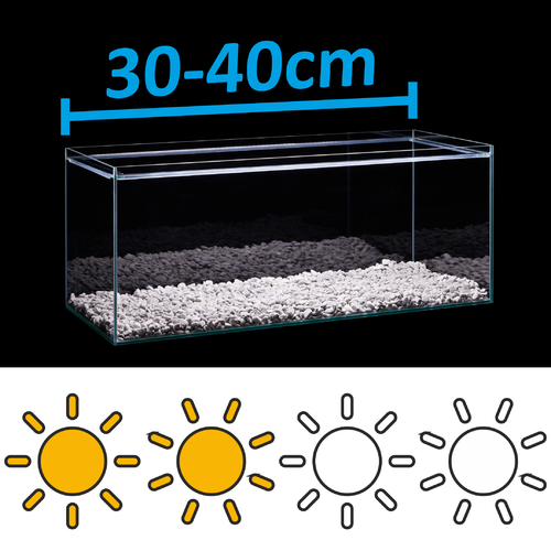 LED Set for 30-40cm aquarium - light requirements: standard