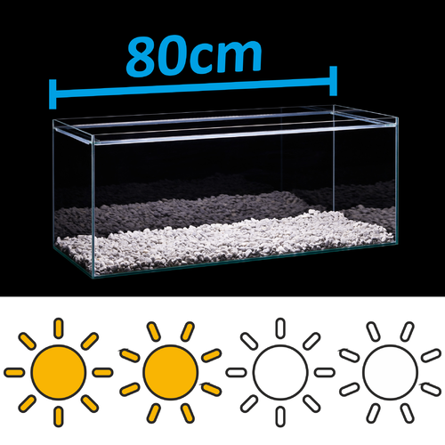 LED Set for 80cm aquarium - light requirements: standard