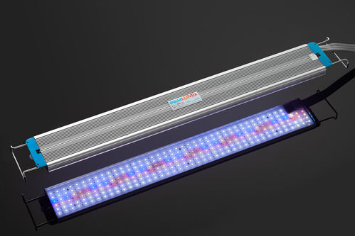 aquaLUMix LED-light-bar AFRICAN-SUN
