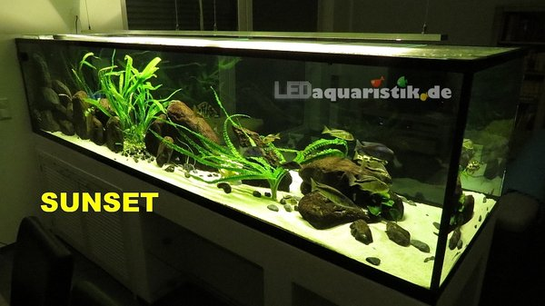 Aquarium 300x90x70 mit 2x eco+ SUNSET LED-Leiste\\n\\n23.09.2013 08:47
